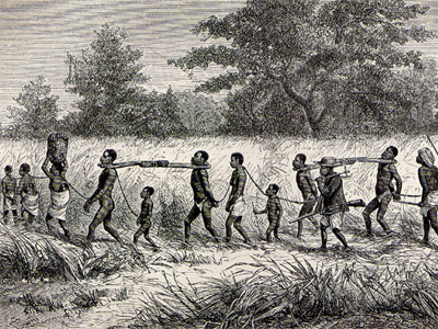 Captured Africans being force marched to the coast for sale to ...